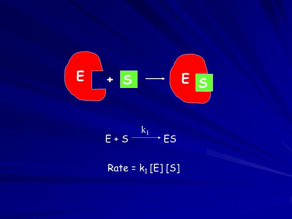 E S + E + S ES k1 Rate = k1 [E] [S]